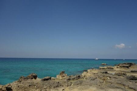 J3-Cayman8