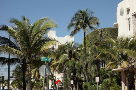 J8-Miami6