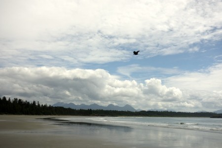 Tofino-long-beach7