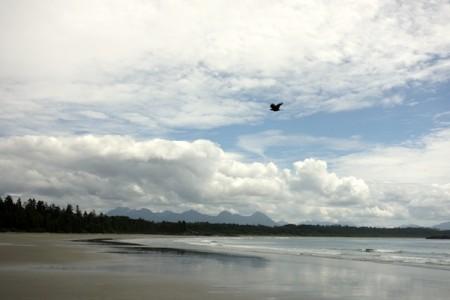 Tofino-long-beach7