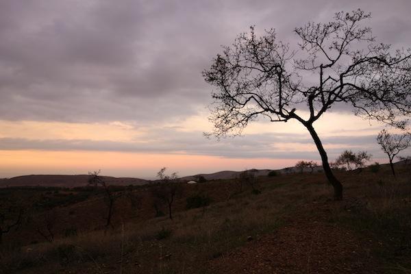 terres-d-amanar2