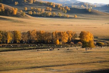 autonme-mongolie-interieure