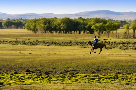 steppe-mongolie-interieure