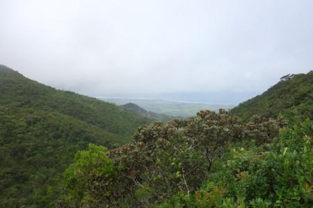 ile-maurice23-parc-national