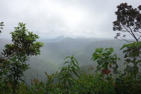 ile-maurice24-parc-national