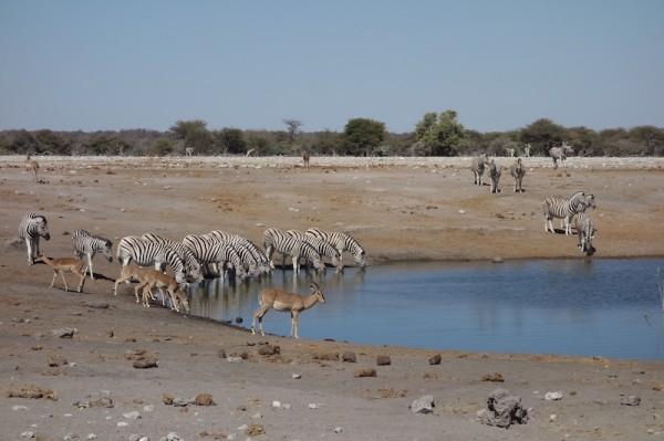 namibie34pointdeau