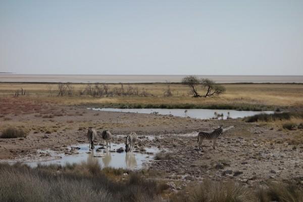 namibie57