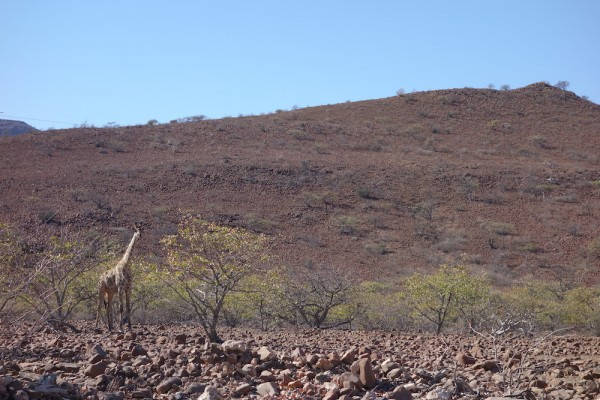 namibie84-damaraland