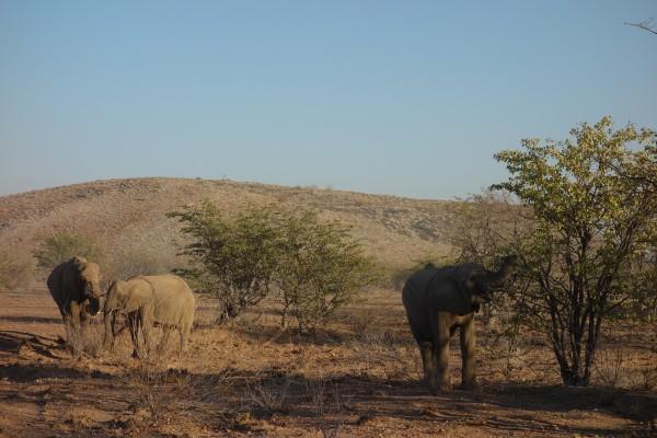 namibie101