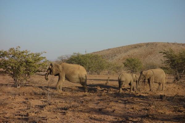 namibie102