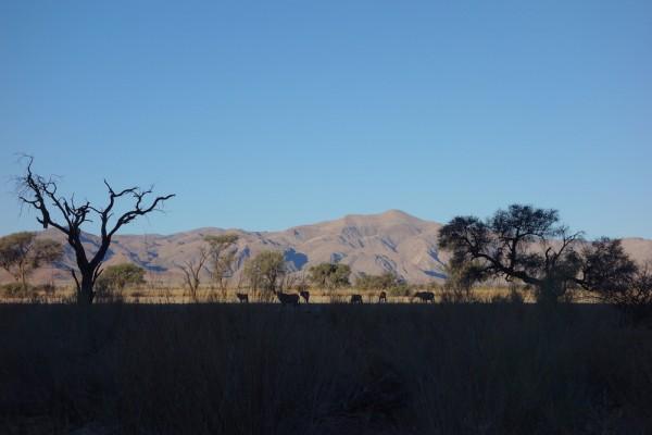namibie148