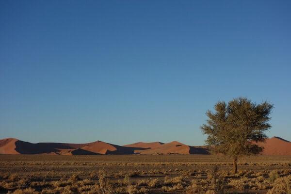 namibie157-desert-namib