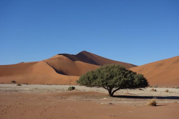 namibie160-desert-namib