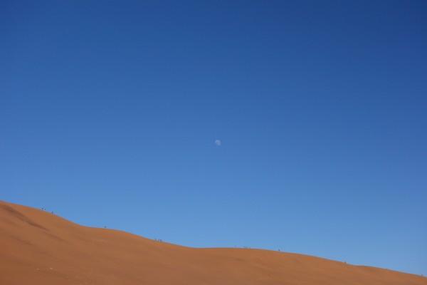 namibie161-desert-namib