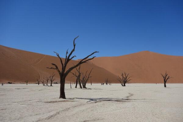namibie168-desert-namib