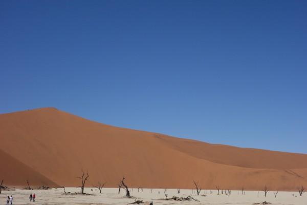 namibie169-desert-namib