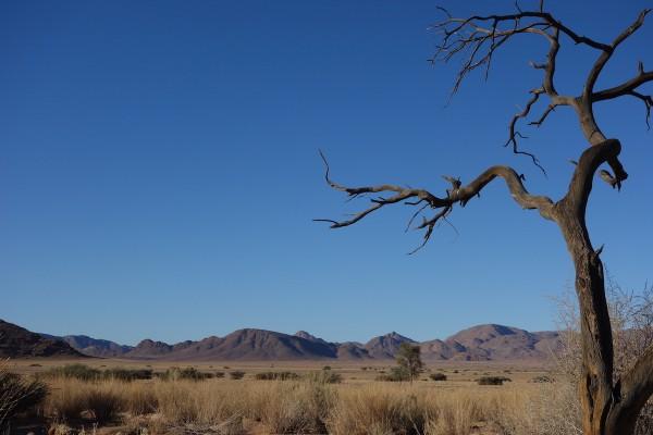 namibie171-desert