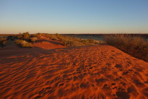 namibie181-desert