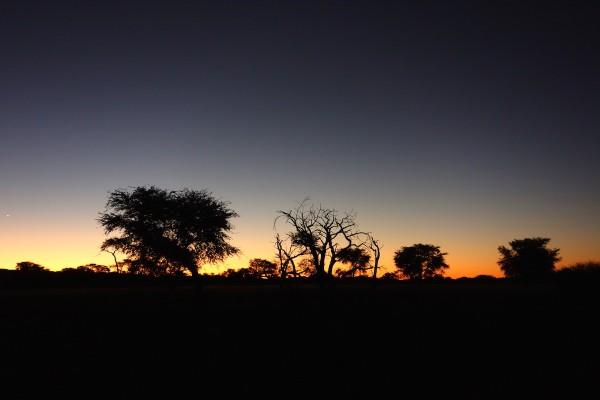 namibie184-desert