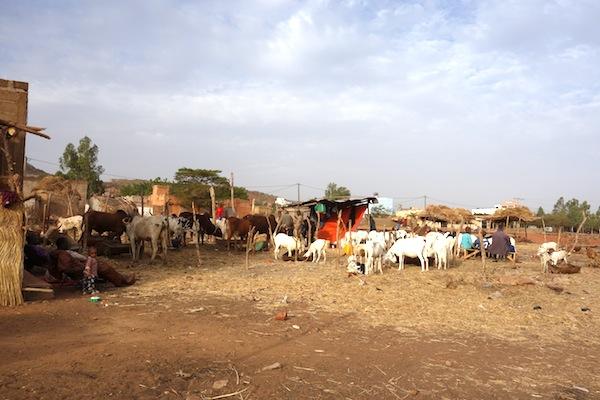 bamako12